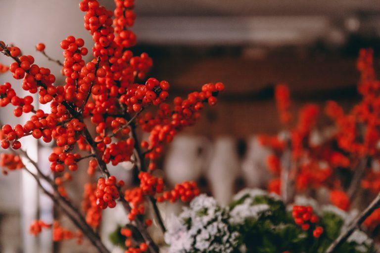 FlowerSchool-83